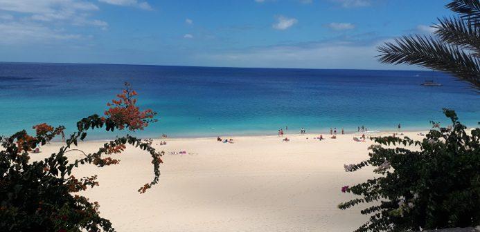Praktikum auf Fuerteventura