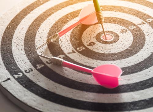 Welche Ziele verfolgen Sie?