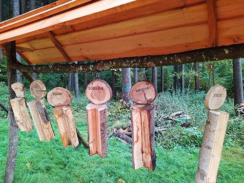 Grünes Klassenzimmer in Heigenbrücken - Baumarten lernen